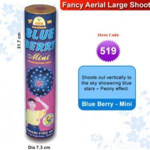 Blue berry – Mini
