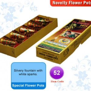 Special Flower Pots